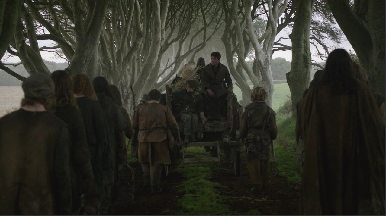 Dark Hedges - Game of Thrones