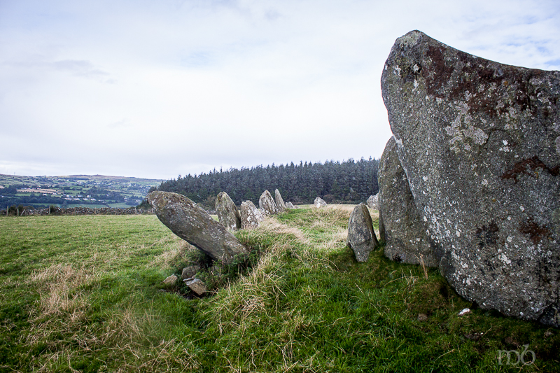 Stones from Beltany Stone Circle