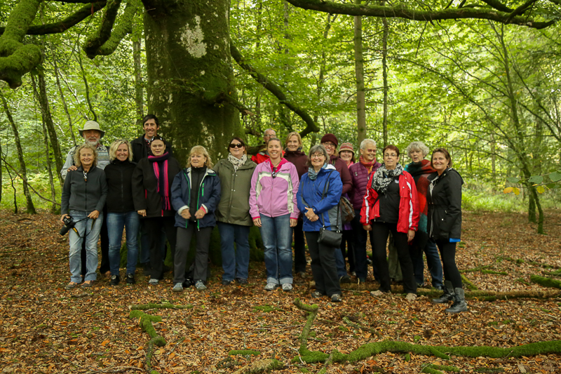 Guests from Castles, Saints & Druids - Yoga Retreat - Tomnafinnoge Woods, Wicklow