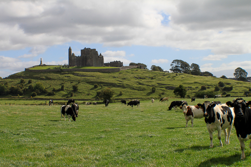 The Rock of Cashel - Tipperary